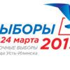 Выборы в Усть-Илимске: обучение по ВКС